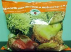 Seeds of fodder beet Ursus
