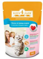 Canned food for cats with a salmon and a tuna in