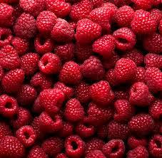 Saplings of remontantny raspberry of the Regimen
