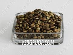 Кофе Зеленое Зерно