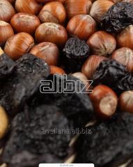 Prunes dried harvest 2017