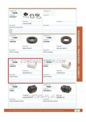 Plug of the coupling device 70786CNT