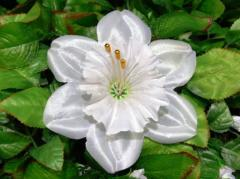 Искусственные цветы и аксессуары оптом
