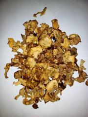 Marenovany mushrooms