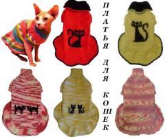 Вязаные платья для кошек сфинкс