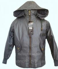 Куртка демисезонная 980