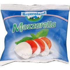 Bayernland Mozzarella cheese of 45%, 125 g