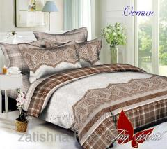 The TM TAG bedding set about a computer. S041