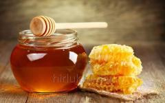 La miel grechany