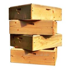 Beehive multicase 10 frame 145 mm. 2958101