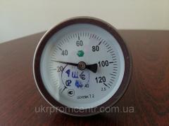Bimetallic dial thermometers