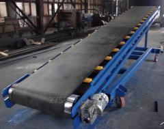 The tape conveyor for a sunflower