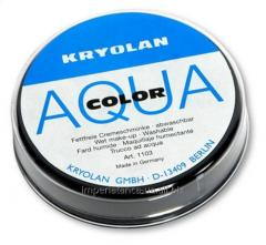 Face painting compact Kryolan 1103