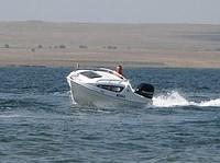 Boat Dolphin-422