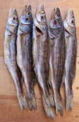 Pike perch dried (without scales)