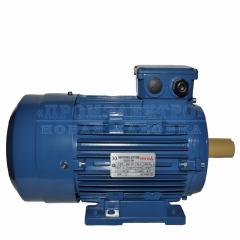 Электродвигатель АИР100L4 - 4кВт 1500 об/мин Лапа