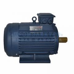 Электродвигатель АИР132M8 - 5,5кВт 750 об/мин Лапа