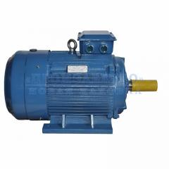 Электродвигатель АИР200L6 - 30кВт 1000 об/мин Лапа
