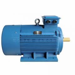 Электродвигатель АИР355М4 - 315кВт 1500 об/мин Лапа