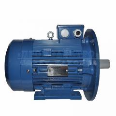 Электродвигатель АИР112МА6 - 3кВт 1000 об/мин Лапа+фланец