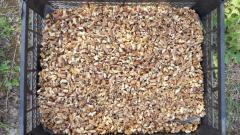 Грецкий орех 1/4 пшеничная
