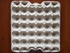 Gofrotara for eggs, paper packing a tray on 30