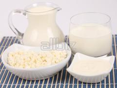 Молоко и молочная продукция, Сыры, Молоко,