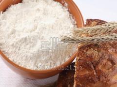 Flour the premium for export Ukraine DSTU 46.004-9