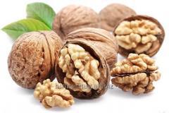 Walnut California / California Walnuts