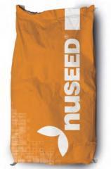 Sorghum seeds Sprint W Nuseed companies