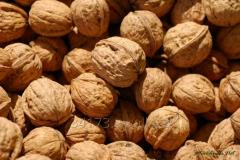 Nut caliber 28+