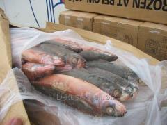 The crab fell 400 g fresh-frozen