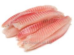 Catfish fillet / sh fresh-frozen