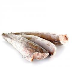 Хек 300-500 свежемороженый