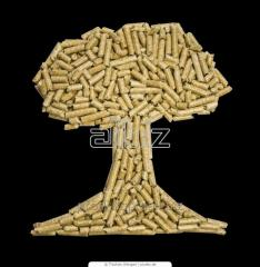 Biobriquettes fuel