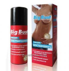 Big bust - cream for increase in volume of a breas