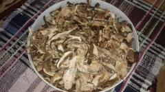White dried mushrooms of 2016 from the Carpathians