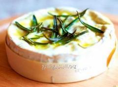 Форма для приготовления сыра Камамбер 10x10x9,5cm + закваска
