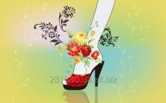Women's shoes of Tselton