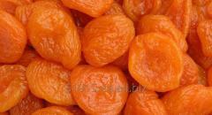 Premium dried apricots