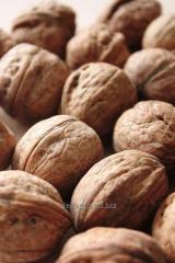 Грецкий орех в скорлупе Walnut