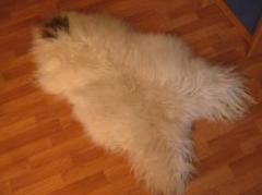 Natural fur sheepskin. Natural fur sheepskin