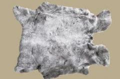 Skin of a rabbit. Skin of a rabbit wholesale. A