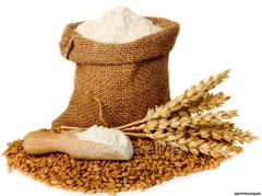 Wheat flour (premium)