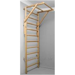Ladder and horizontal bar/Swedish a ladder with a
