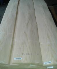 Interline interval ash-tree of 0,6 mm