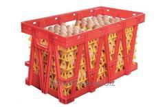 Ящик для перевозки яиц Линдаматик