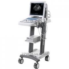 Portable ultrasonography of DP50 Mindray