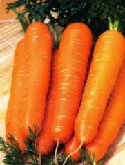 Carrots Nantes