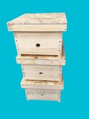 Multicase beehive